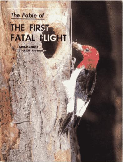 The First Fatal Flight